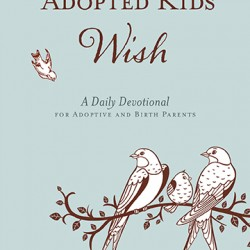 Daily Devotional For Adoptive And Birth Parents