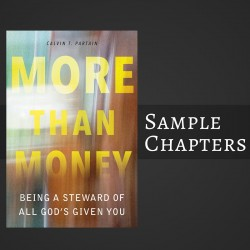 """Free Sample Of """"More Than Money"""""""