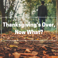 Thanksgiving's Over, Now What?